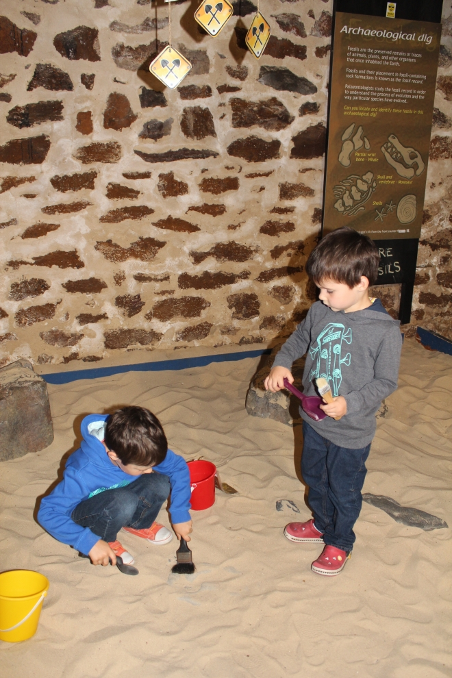 "Great kids activities at the Whale Centre - digging for ""fossils"""