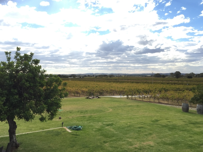 View from the deck at Artisans of Barossa