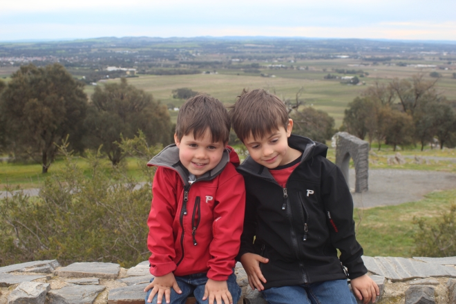 Boys at Mengler's Hill soon after we arriving - the sculpture park is still a favourite spot
