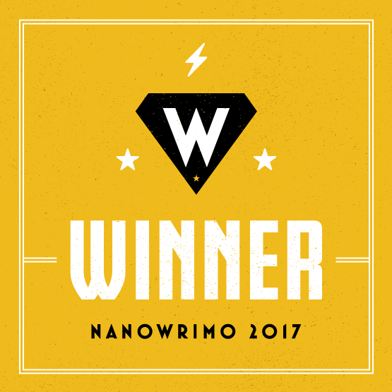 5 lessons from my Nanowrimo win