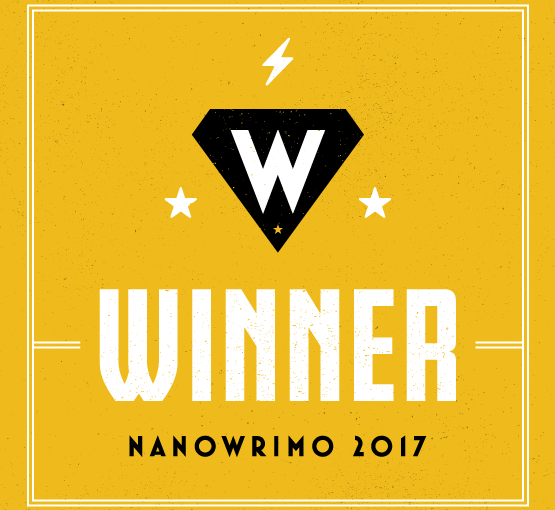5 lessons from my Nanowrimowin